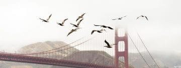 Golden Gate, how and when was it built?