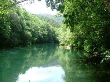 Curso de Restauración hidrológica de ríos regulados