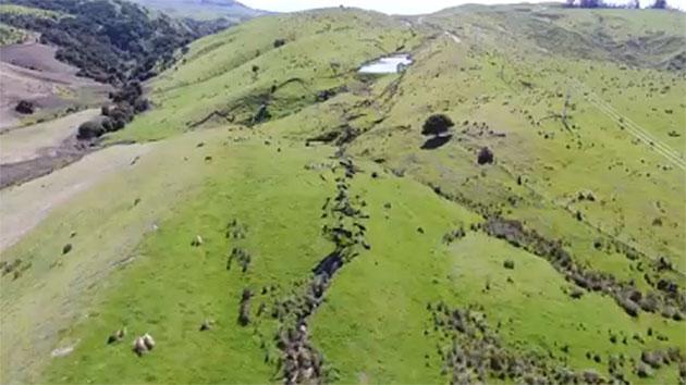 Impresionantes desplazamientos de falla a vista de dron tras el terremoto de Nueva Zelanda