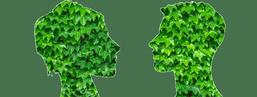 Conciencia medioambiental