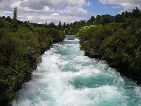 Curso de Restauración Ecológica de ecosistemas fluviales