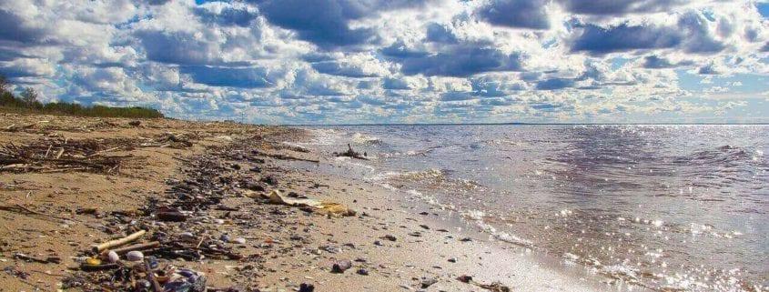 Basuraleza playa