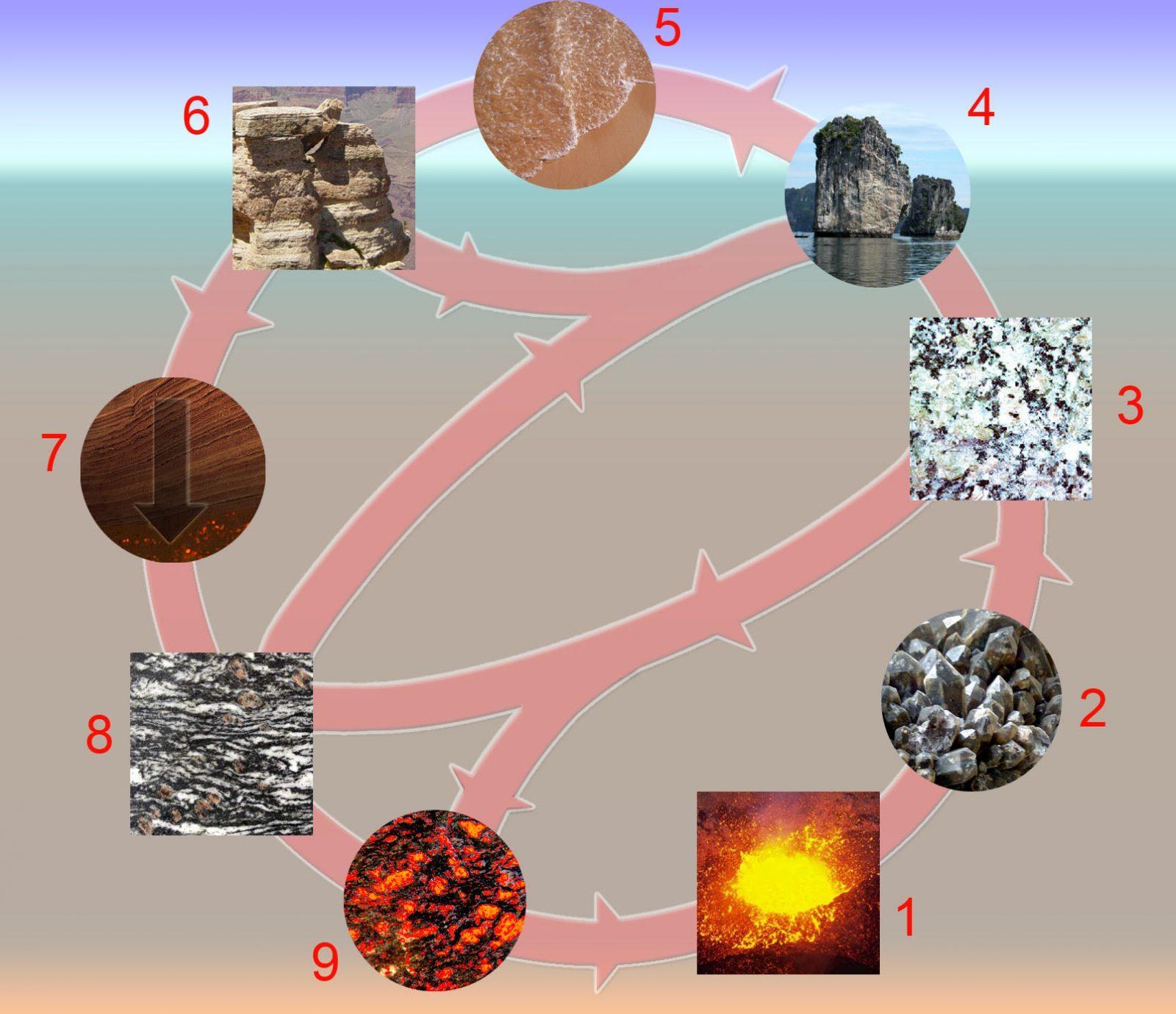 ciclo de formación rocas sedentarias