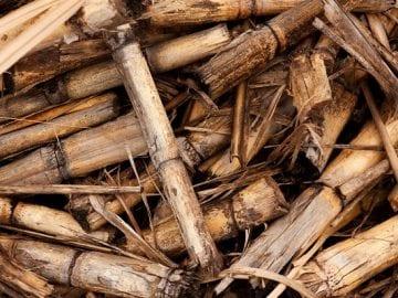 Curso de diseño, cálculo, montaje y mantenimiento de sistemas de Energía de la biomasa