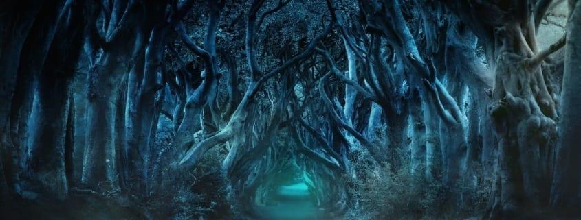 bosque oscuro juego de tronos