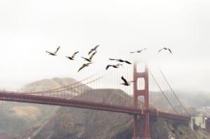 Golden Gate, ¿cómo y cuándo se construyó?