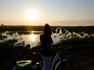 El Delta del Ebro: características, formación y actividades