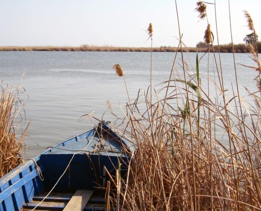 barca en el delta del ebro