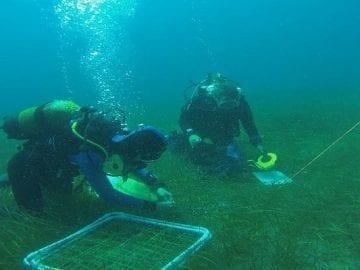 Curso de introducción a la Oceanografía y técnicas de previsión meteorológica